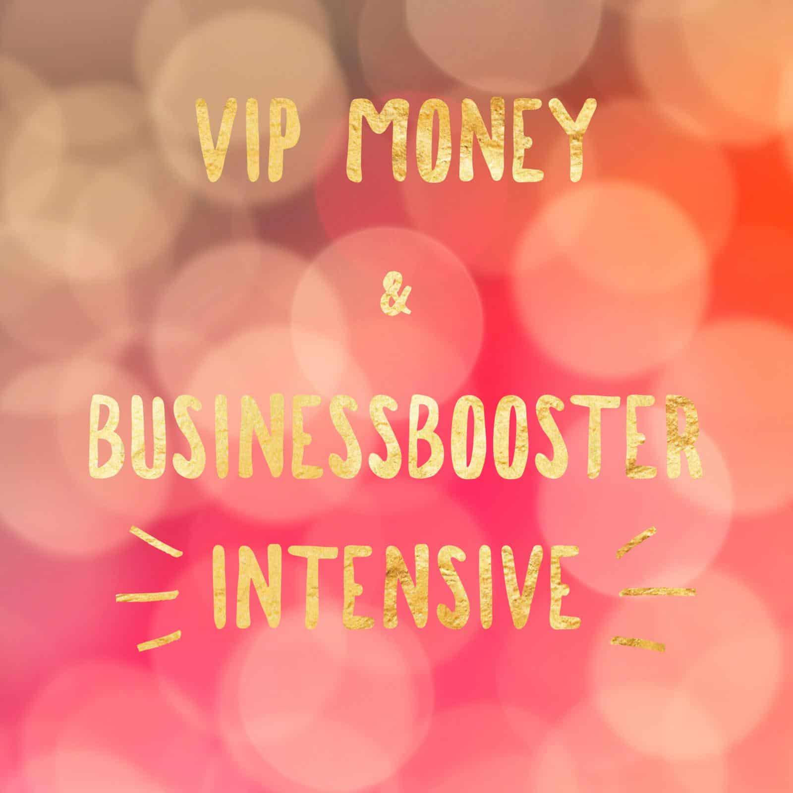 VIP Money Businessbooster Intensive